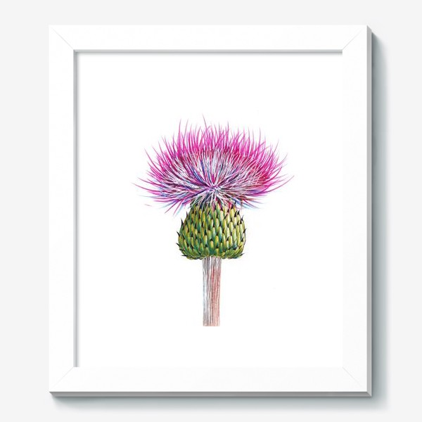 Картина «Цветок Чертополоха»