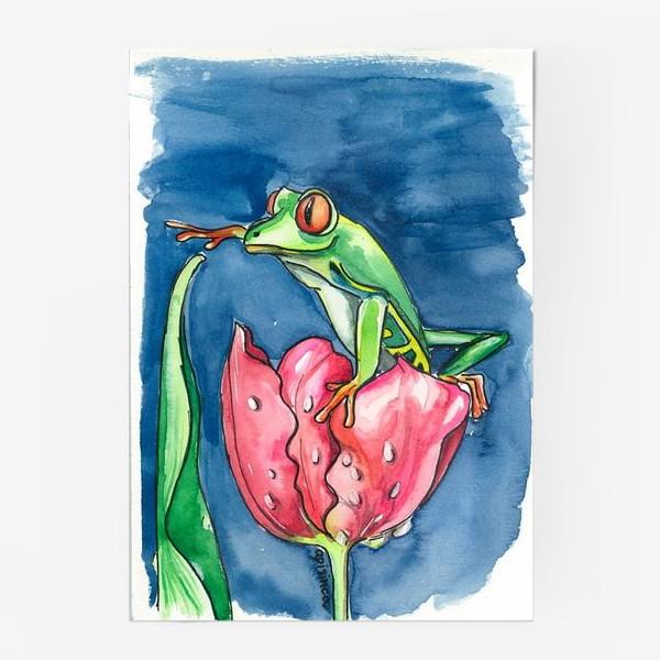 Постер «Лягушка и тюльпан»