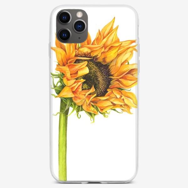 Чехол iPhone «Цветок подсолнуха»