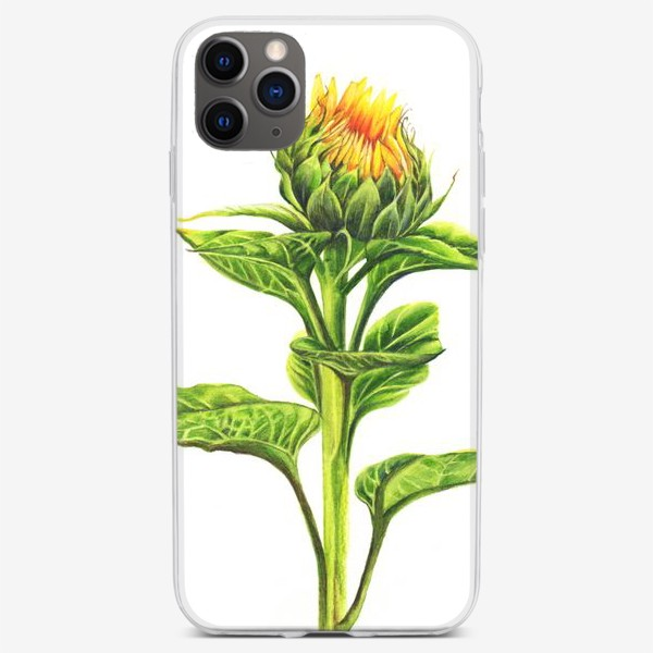 Чехол iPhone «Бутон подсолнуха»