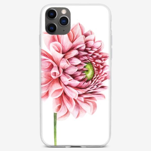 Чехол iPhone «Розовый георгин»