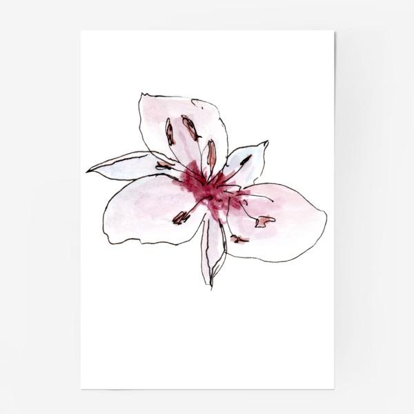 Постер «Цветок. Розовая нежность.»