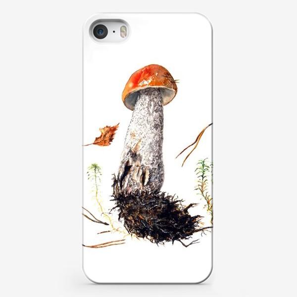 Чехол iPhone «Подберёзовик»