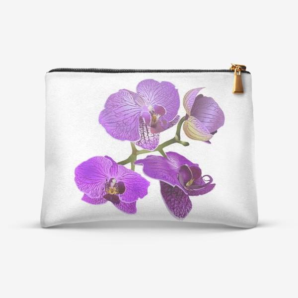 Косметичка «Кустик орхидеи фиолетового цвета векторная иллюстрация»