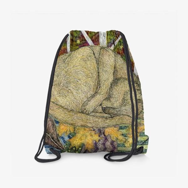 Рюкзак «Кот и мишка тедди»