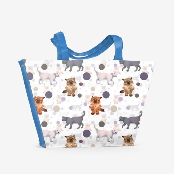 Пляжная сумка «котята и мяч»