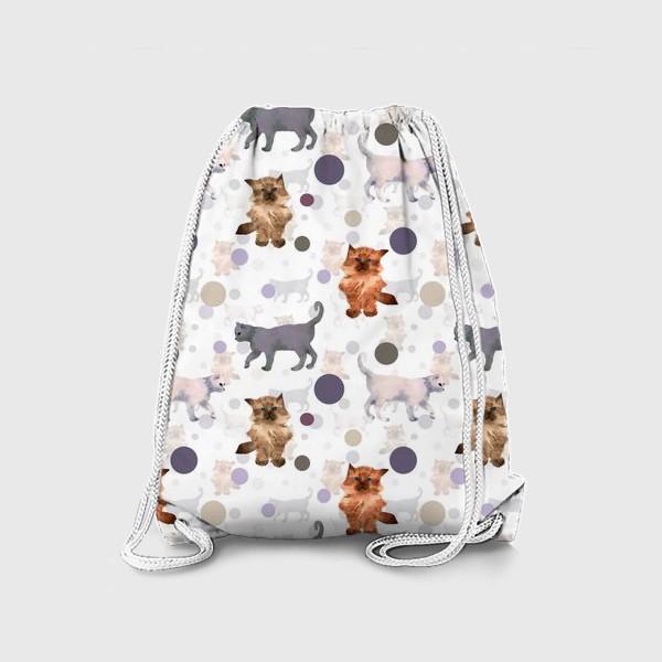 Рюкзак «котята и мяч»