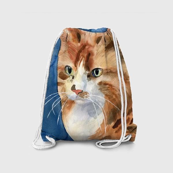 Рюкзак «домашняя кошка»