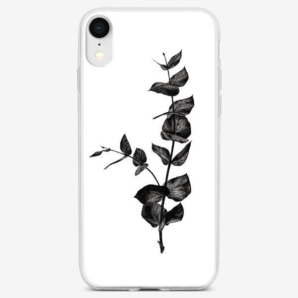 Чехол iPhone «Ветвь эвкалипта»