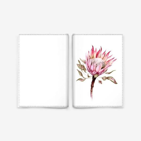 Обложка для паспорта «Протея»