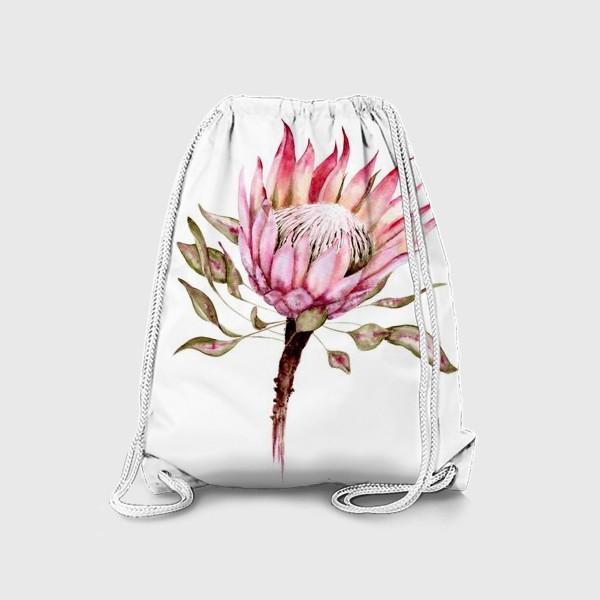 Рюкзак «Протея»