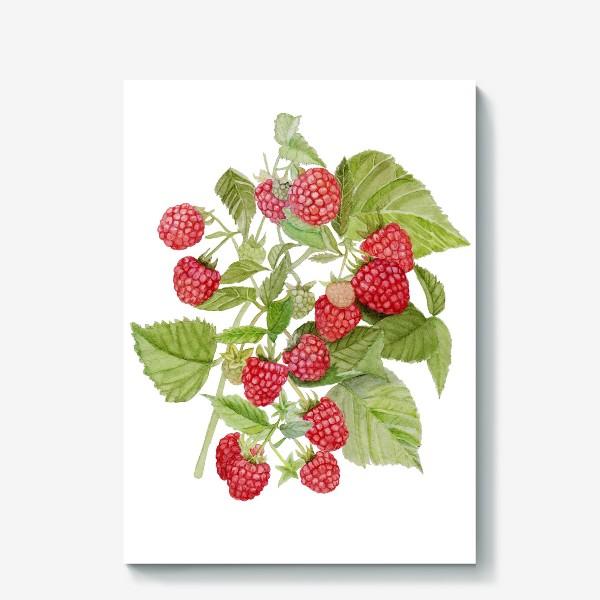 Холст «Watercolor illustration of red raspberry Bush.»