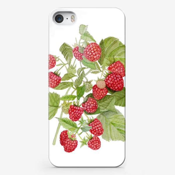 Чехол iPhone «Watercolor illustration of red raspberry Bush.»