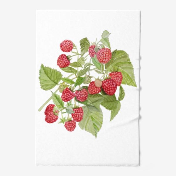 Полотенце «Watercolor illustration of red raspberry Bush.»