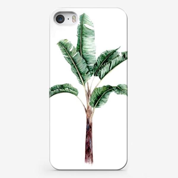 Чехол iPhone «Тропики банановое дерево»