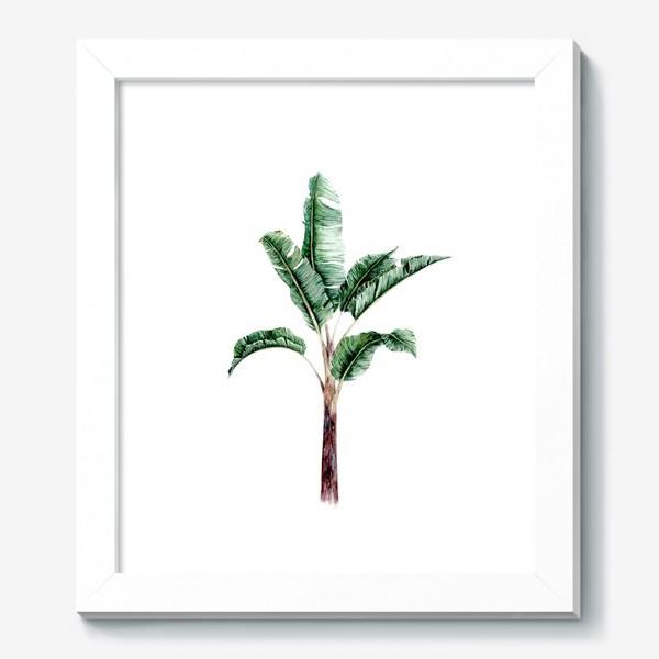 Картина «Тропики банановое дерево»