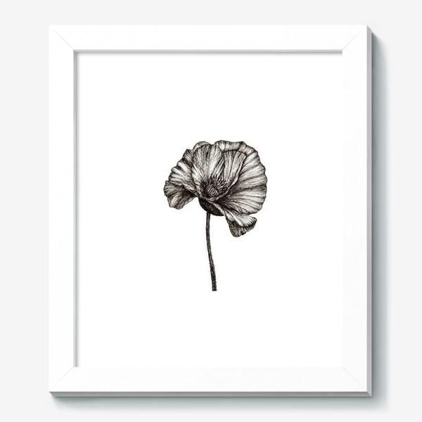 Картина «Цветок мака графика»