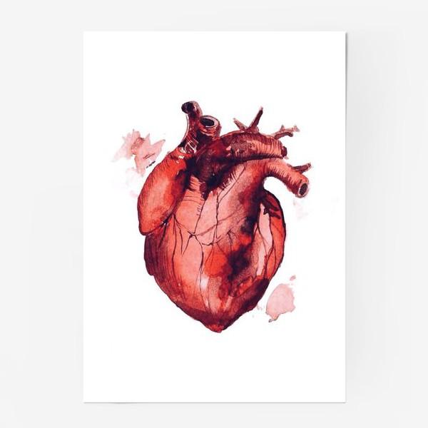 Постер «Сердце»