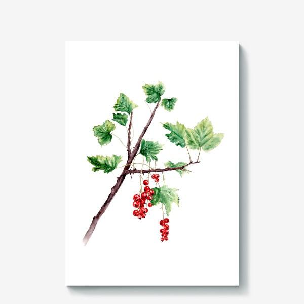 Холст «Ветка смородины ботаническая иллюстрация»