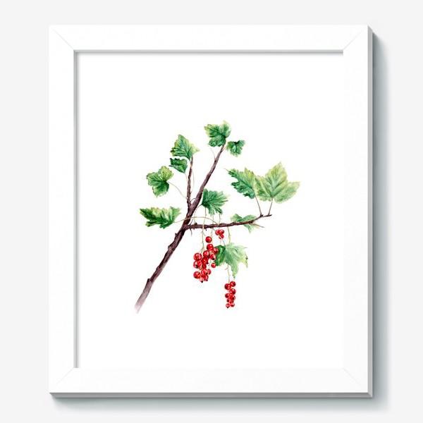 Картина «Ветка смородины ботаническая иллюстрация»