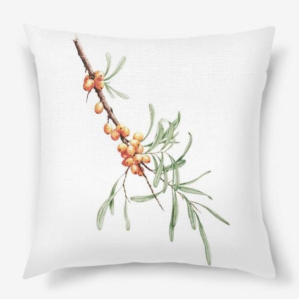 Подушка «Ветка облепихи ботаническая иллюстрация»