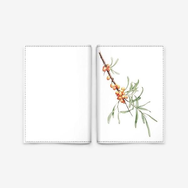 Обложка для паспорта «Ветка облепихи ботаническая иллюстрация»