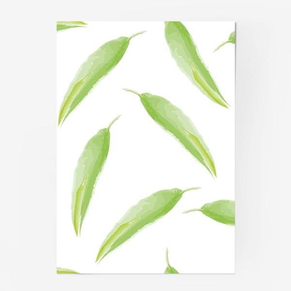 Постер «тропические листья,перья»