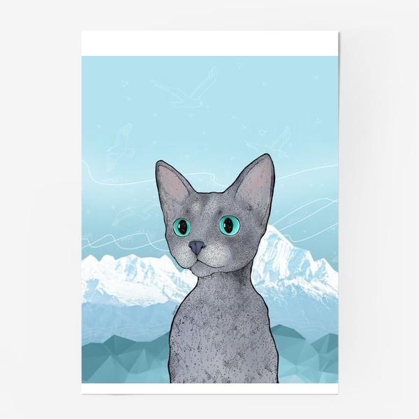 Постер «Кот Клаус»