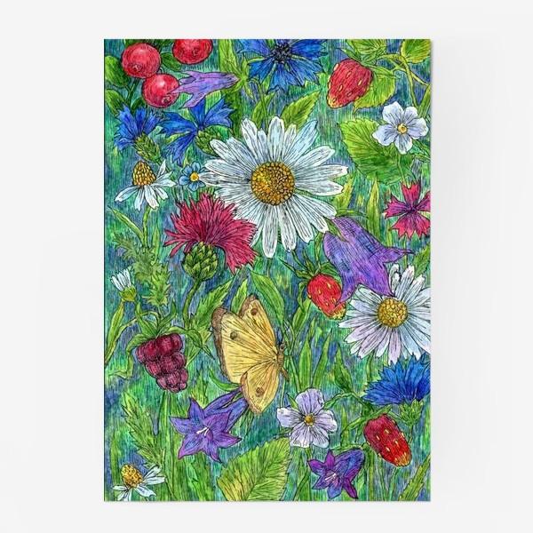 Постер «Полевые цветы и ягоды»