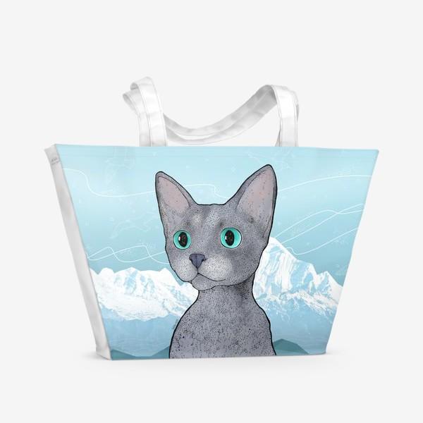 Пляжная сумка «Кот Клаус»