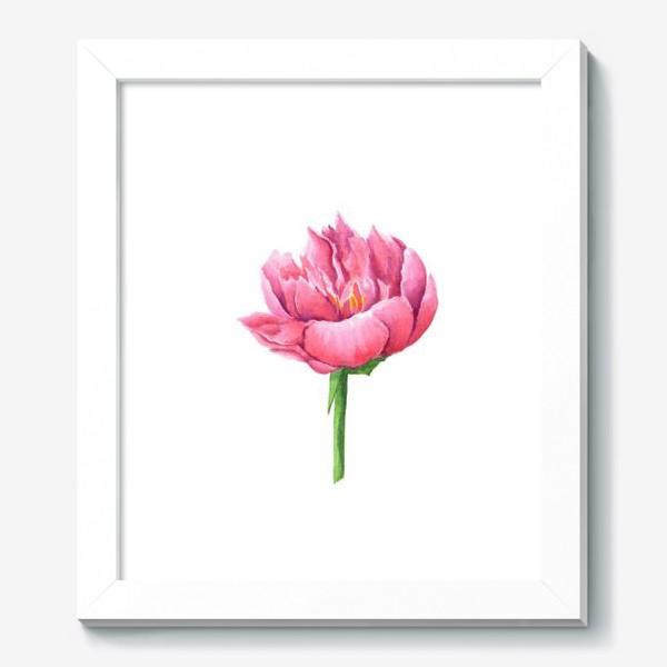 Картина «Розовый пион»