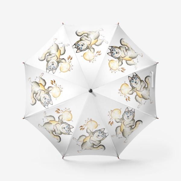Зонт «Собака Хаски шаман»
