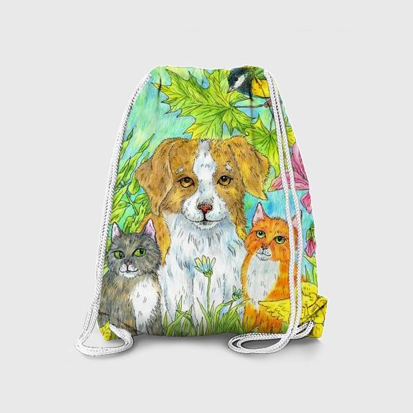 Рюкзак «Щенок и котята»