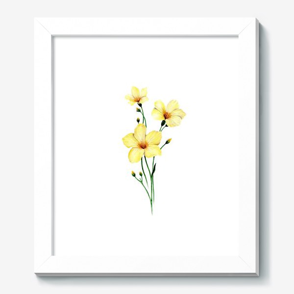 Картина «Желтые цветы ботаническая иллюстрация»