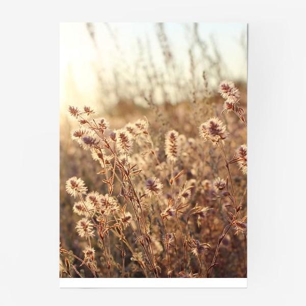 Постер «В поле на закате»