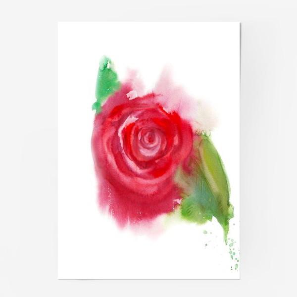 Постер «Магия цветка»