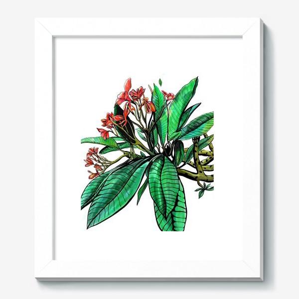 Картина «Красные Орхидеи. Шикарные цветы орхидеи»
