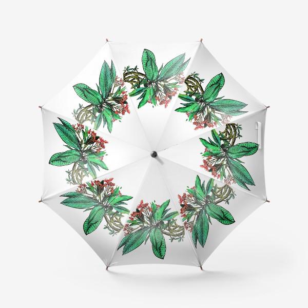 Зонт «Красные Орхидеи. Шикарные цветы орхидеи»