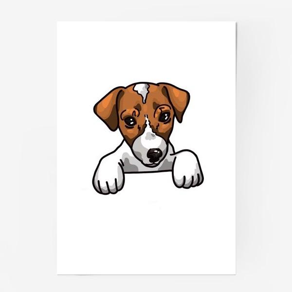 Постер «иллюстрация милый Джек Рассел »
