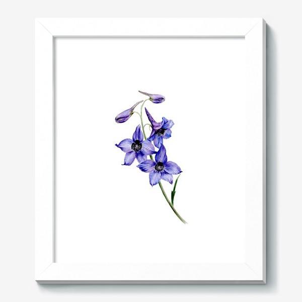 Картина «Фиолетовые цветы ботаническая иллюстрация»