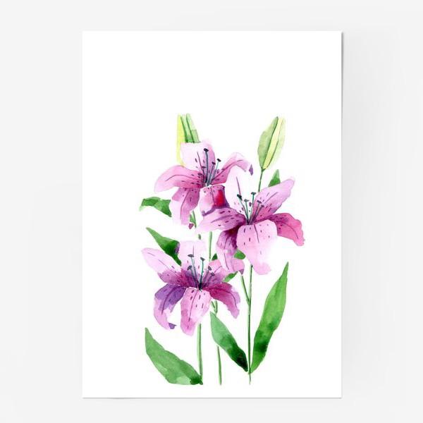 Постер «Лилии»
