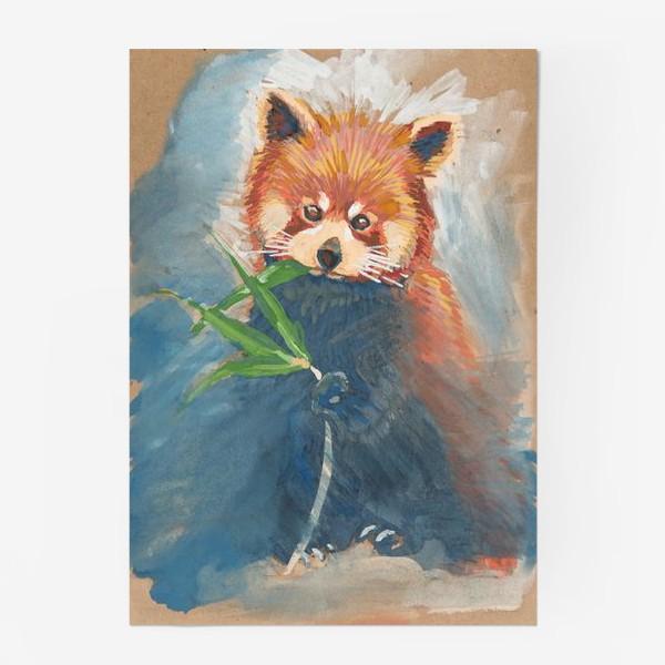 Постер «Красная панда»