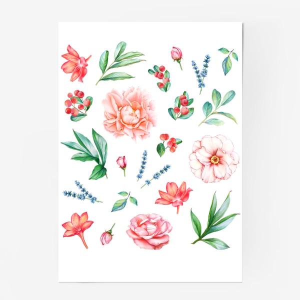 Постер «Пионы, розы, лаванда и ягоды»