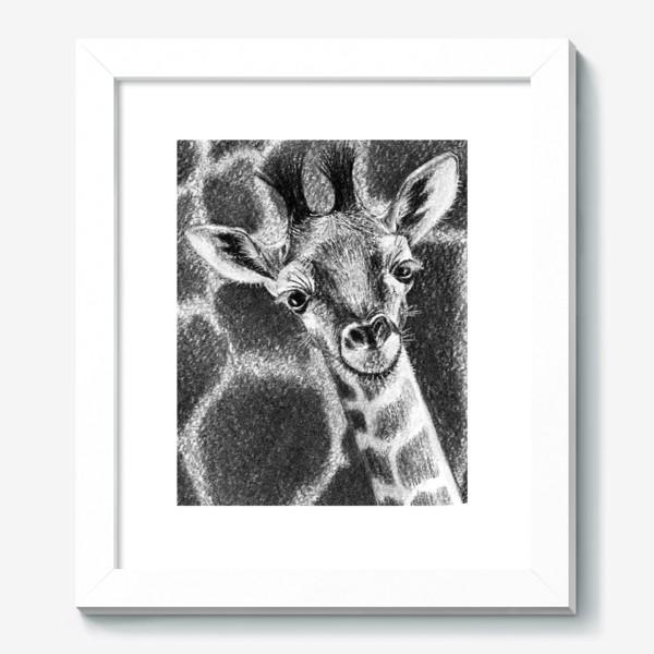 Картина «Жираф черно-белый»
