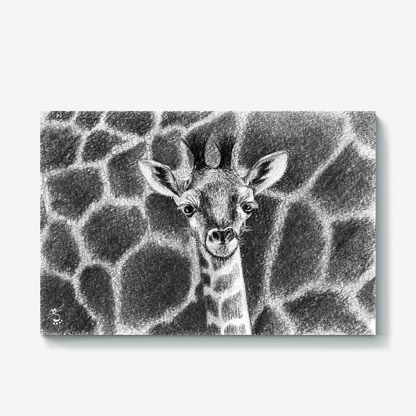 Холст «Жираф черно-белый»