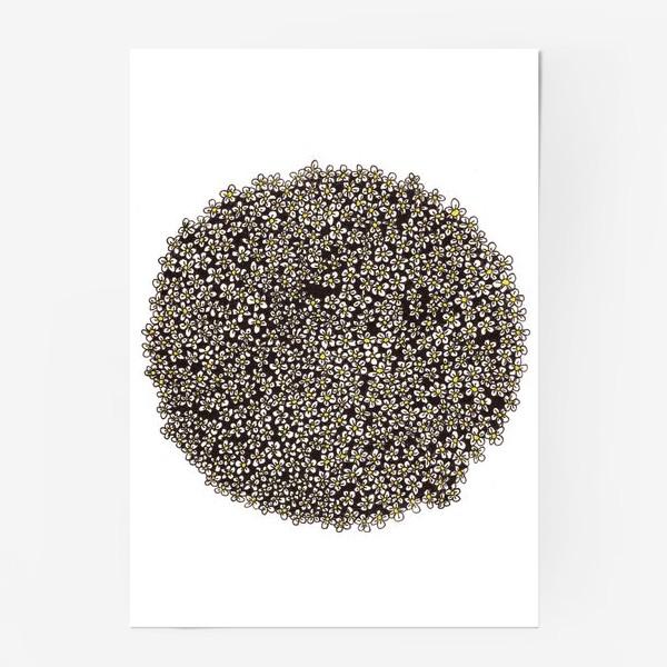 Постер «Планета ромашек»