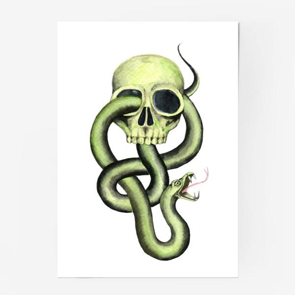 Постер «Черная метка, череп,змея»