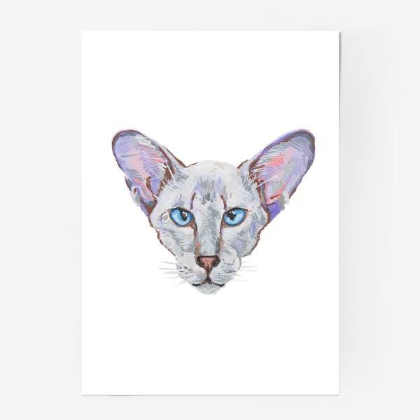 Постер «Котик фиолетовый ух»