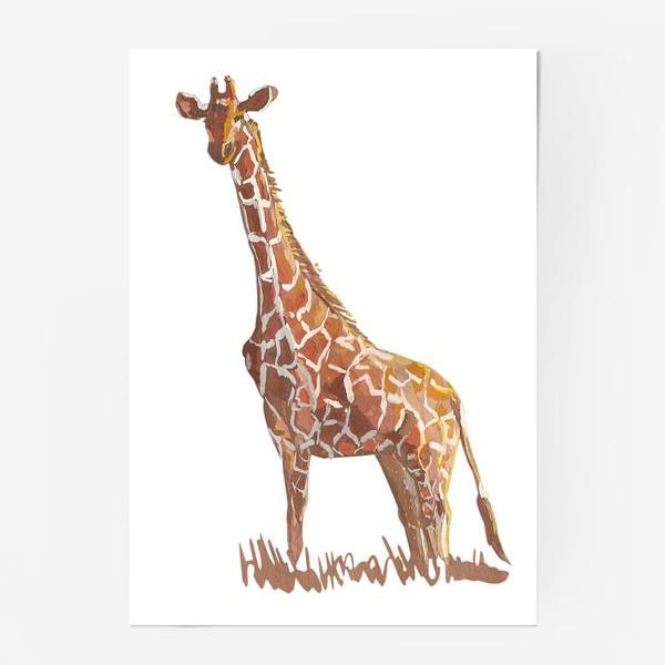 Постер «Жираф»