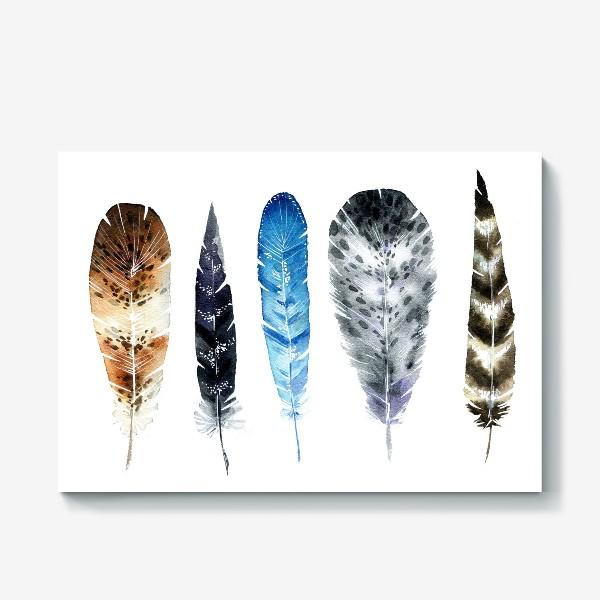 Холст «Пять красивых перьев»